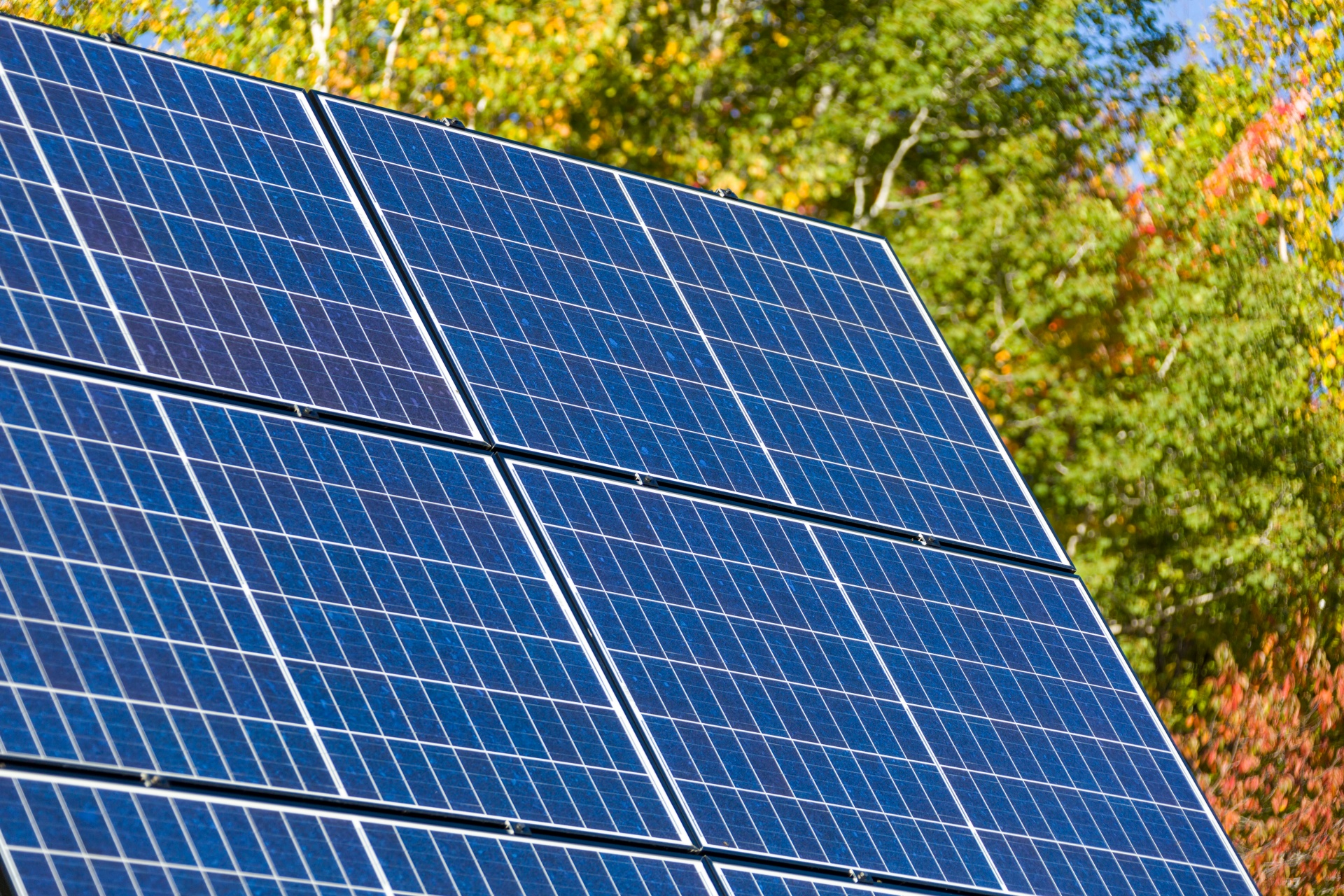 Why should I invest in renewable energy?